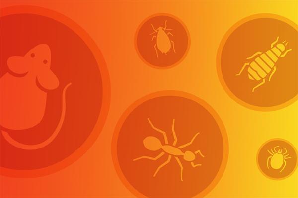 logos of pests
