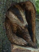 Badger carver