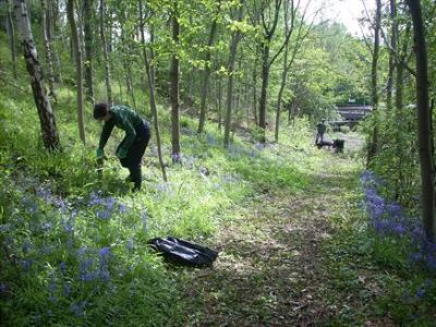 Saltmarsh garden volunteers