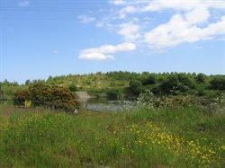 Stargate Ponds & Bewes Hills