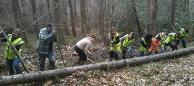 Volunteers at Chopwell Wood