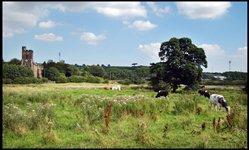 Lamesley Pastures