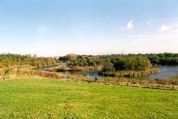 Pelaw Quarry Pond