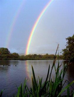 Shibdon Pond