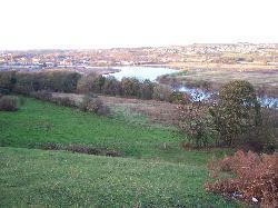 Summerhill and Stella Meadows