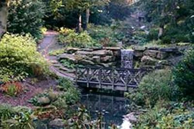 Saltwell Park dene